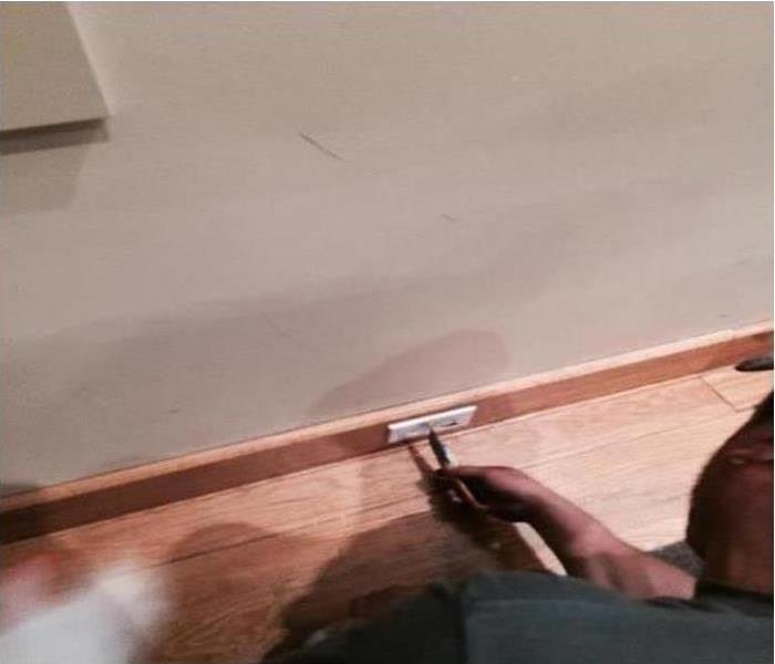 Mold Damage – Buffalo Grove Home  After