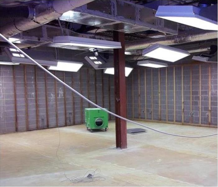 Mold Damage – Buffalo Grove Commercial Building After