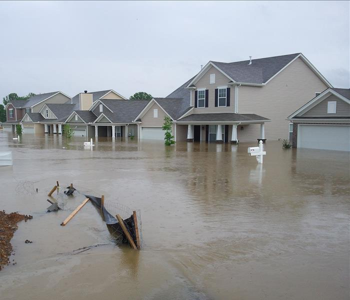 Water Damage Todd's Tip of the Week:  What to do After a Flood