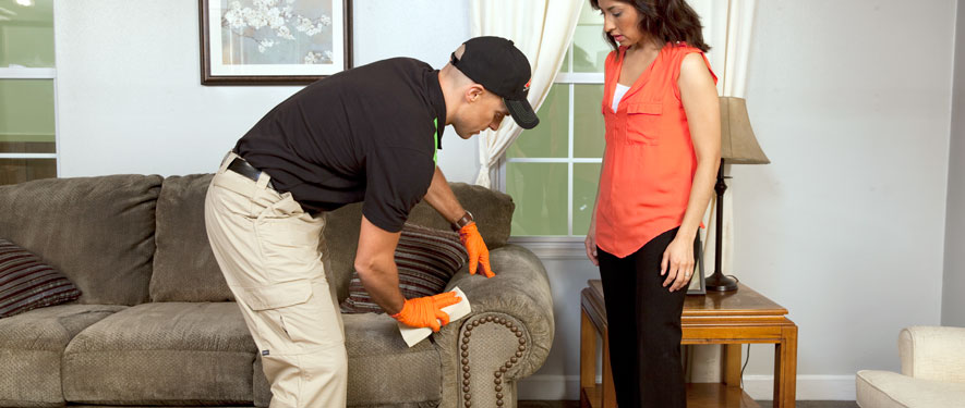 Buffalo Grove, IL carpet upholstery cleaning