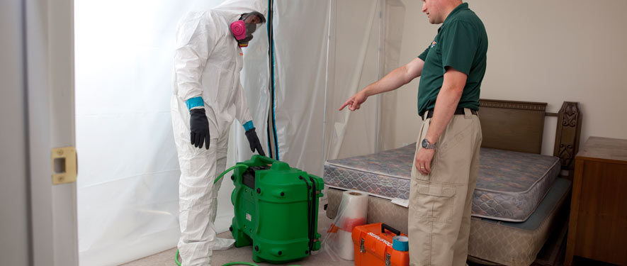 Buffalo Grove, IL mold removal process